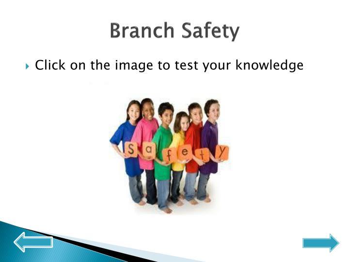 Branch Safety