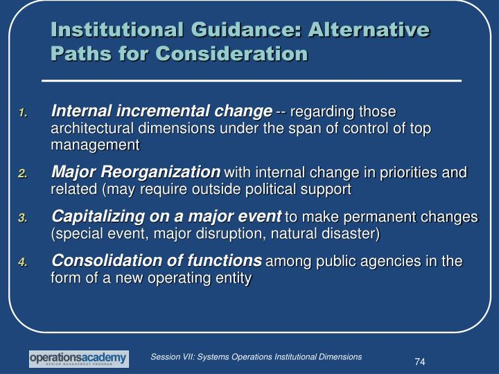 Institutional Guidance: Alternative Paths for Consideration
