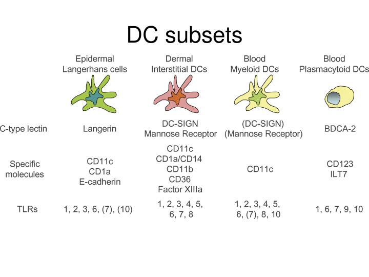 DC subsets