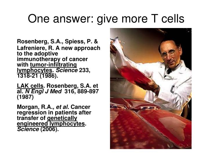 One answer: give more T cells