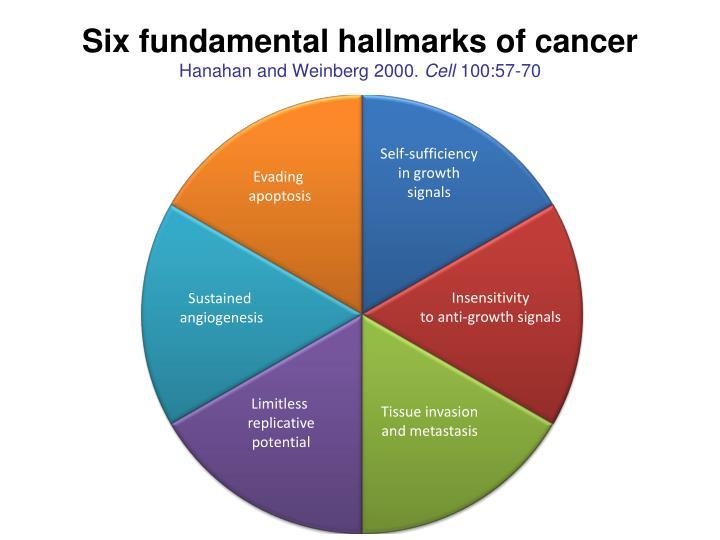 Six fundamental hallmarks of cancer