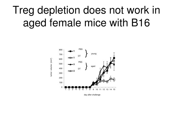 Treg depletion does not work in aged female mice with B16
