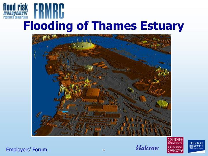 Flooding of Thames Estuary