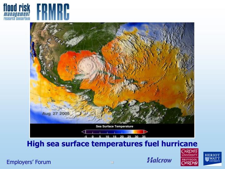 High sea surface temperatures fuel hurricane