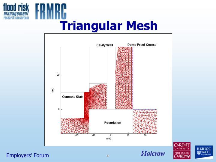Triangular Mesh