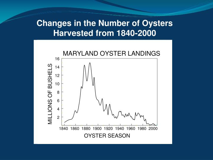 Changes in the Number of Oysters Harvested from 1840-2000
