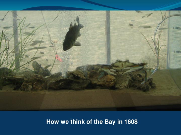 How we think of the Bay in 1608
