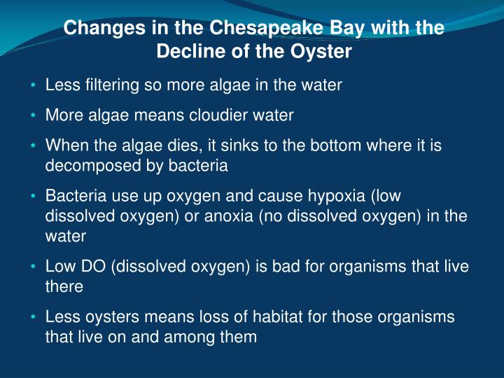 Changes in the Chesapeake Bay with the    Decline of the Oyster