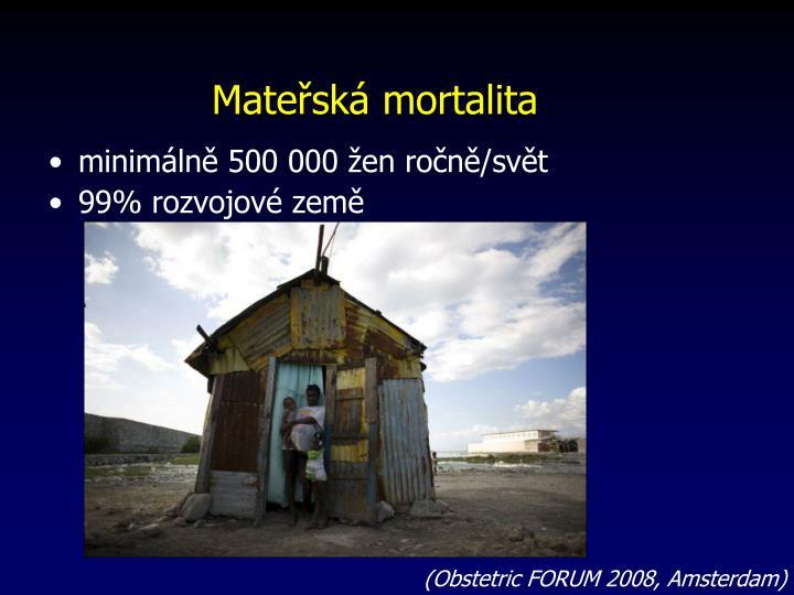 Mateřská mortalita