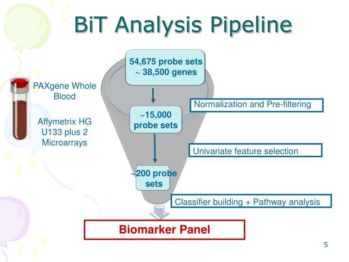 BiT Analysis Pipeline