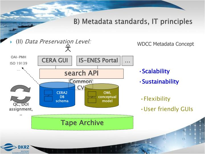 B) Metadata standards, IT principles