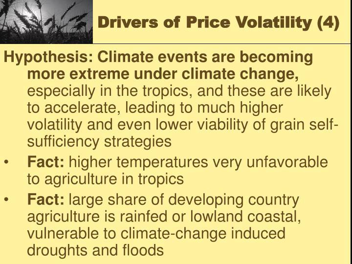 Drivers of Price Volatility (4)
