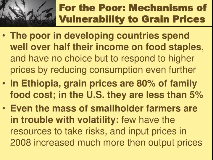 For the Poor: Mechanisms of Vulnerability to Grain Prices
