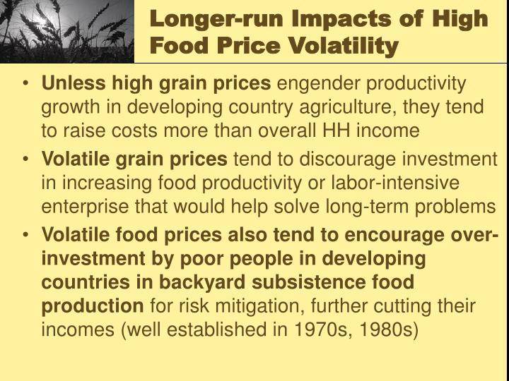 Longer-run Impacts of High Food Price Volatility