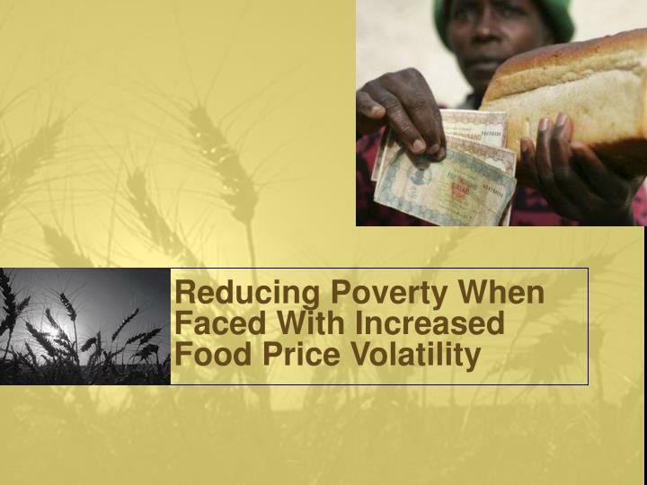 Reducing Poverty When Faced With Increased Food Price Volatility