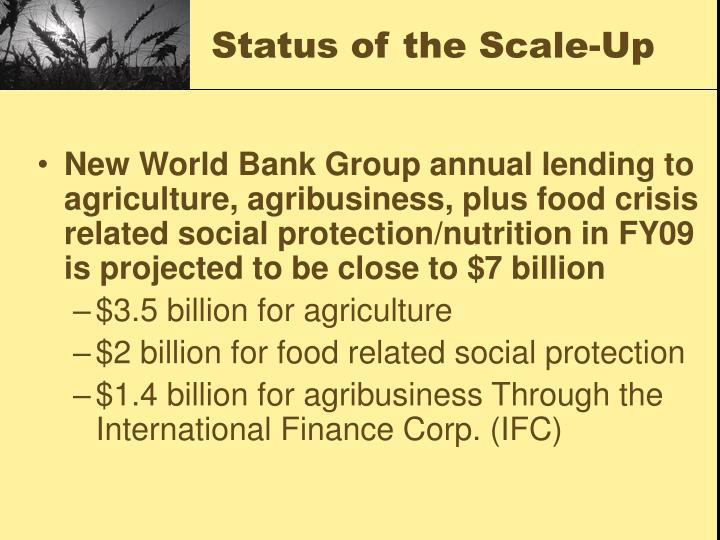 Status of the Scale-Up