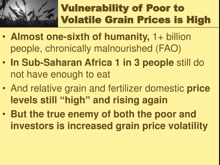 Vulnerability of Poor to Volatile Grain Prices is High