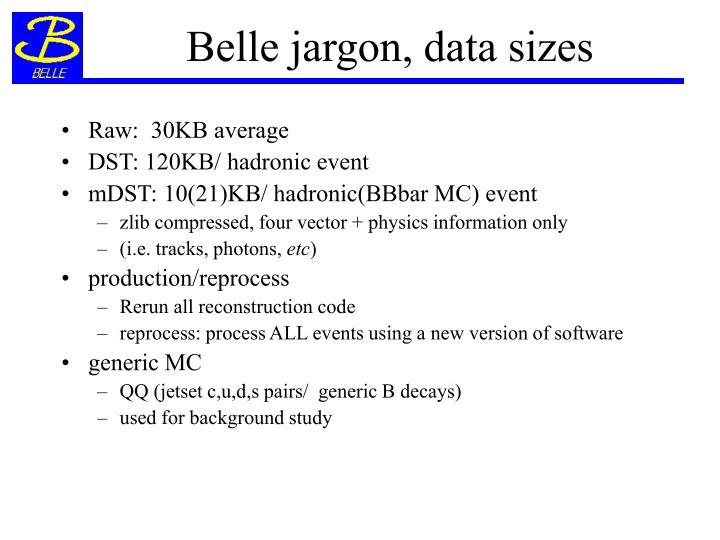 Belle jargon, data sizes