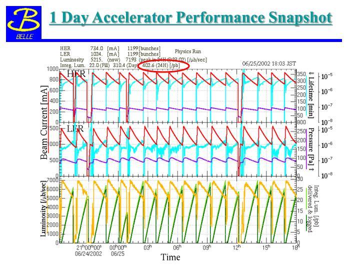 1 Day Accelerator Performance Snapshot