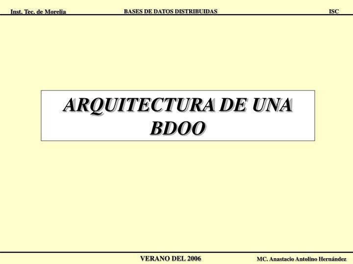 ARQUITECTURA DE UNA BDOO