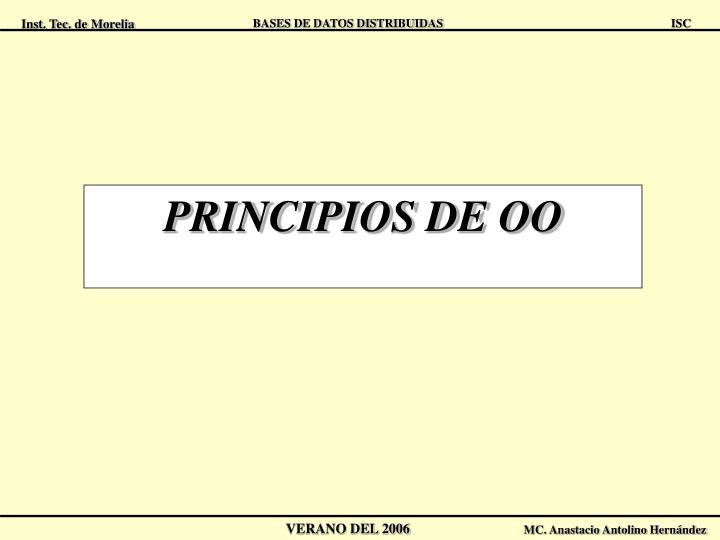 PRINCIPIOS DE OO