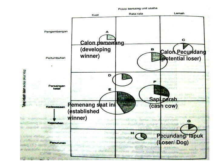Calon pemenang (developing winner)