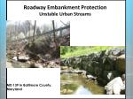 roadway embankment protection unstable urban streams