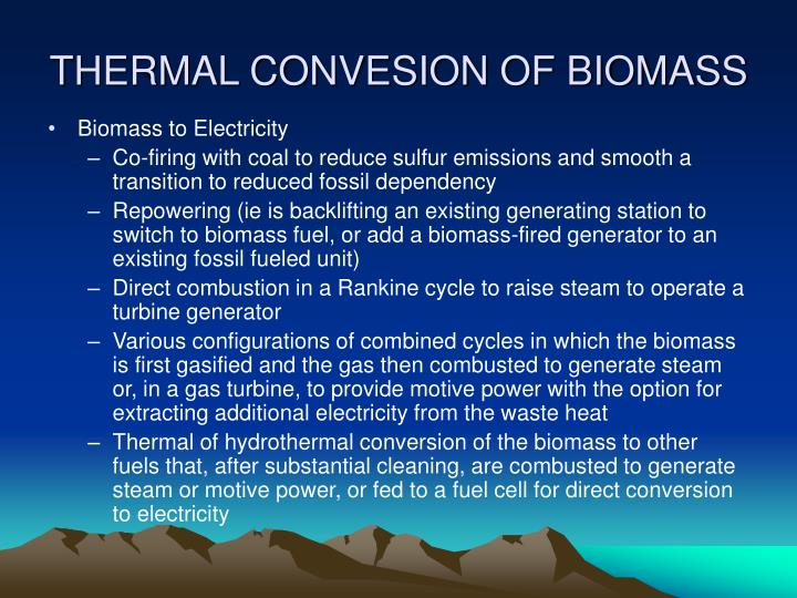 THERMAL CONVESION OF BIOMASS
