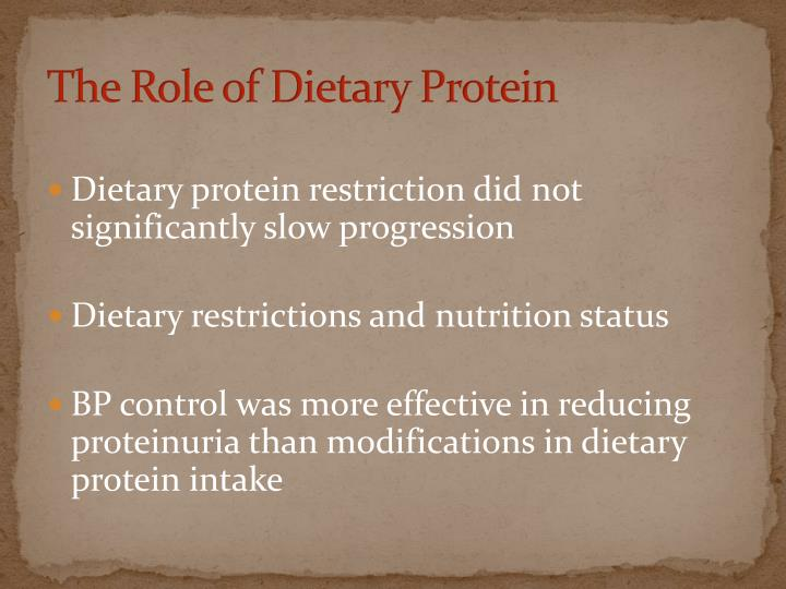 The Role of Dietary Protein