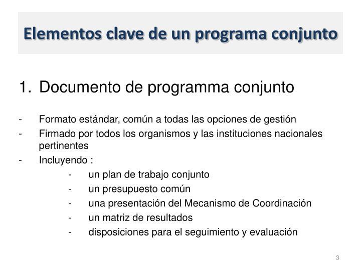 Elementos clave de un programa conjunto