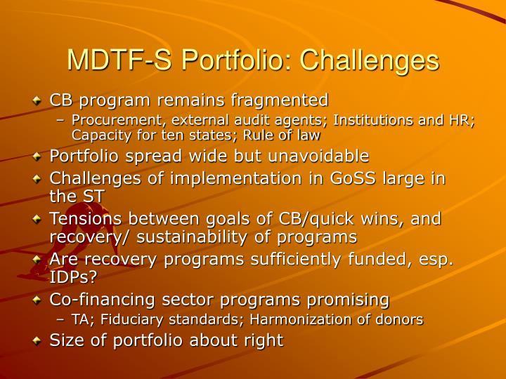 MDTF-S Portfolio: Challenges