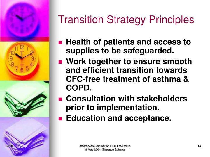 Transition Strategy Principles