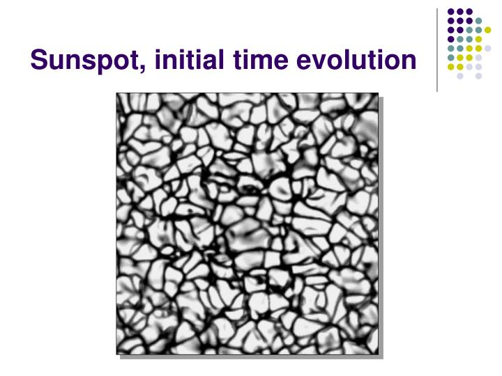 Sunspot, initial time evolution