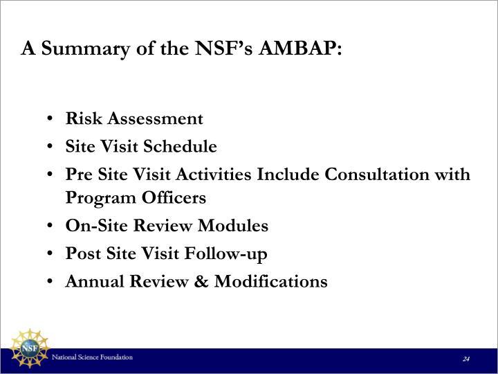 A Summary of the NSF's AMBAP: