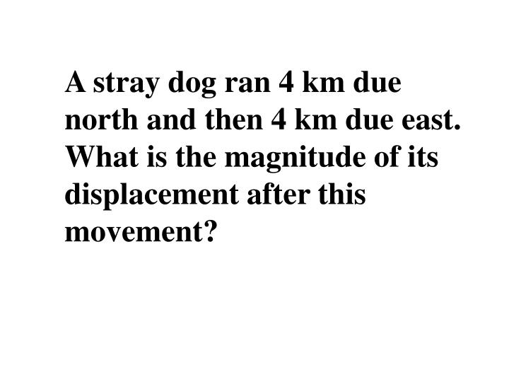 A stray dog ran 4 km due north and then 4 km due east. What is the magnitude of its displacement after this movement?