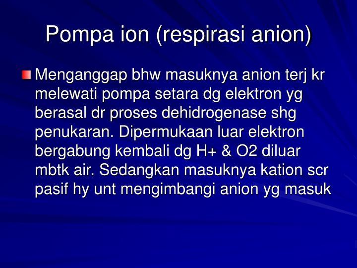 Pompa ion (respirasi anion)