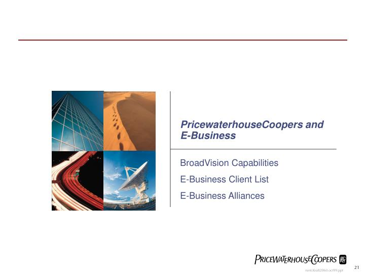 PricewaterhouseCoopers and E-Business