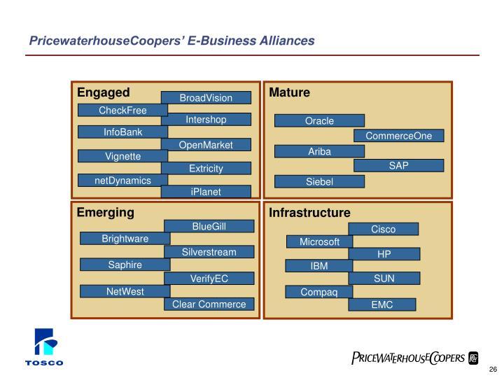 PricewaterhouseCoopers' E-Business Alliances
