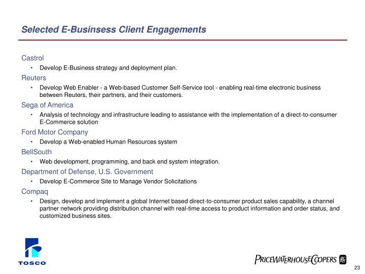 Selected E-Businsess Client Engagements