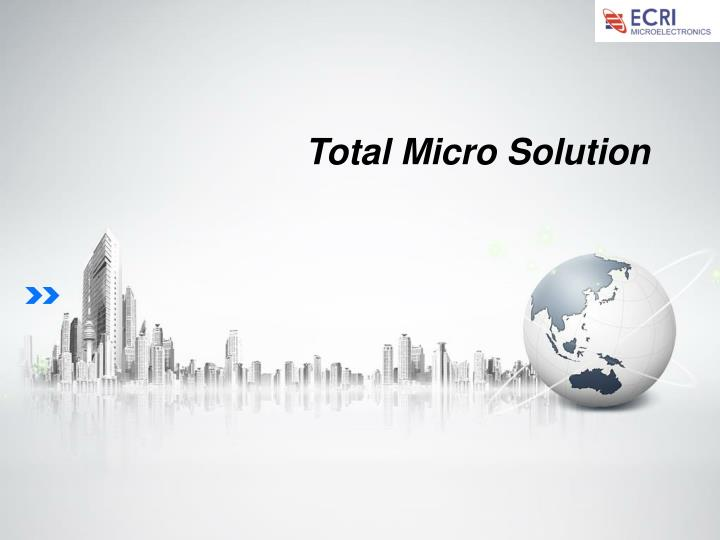 Total Micro Solution