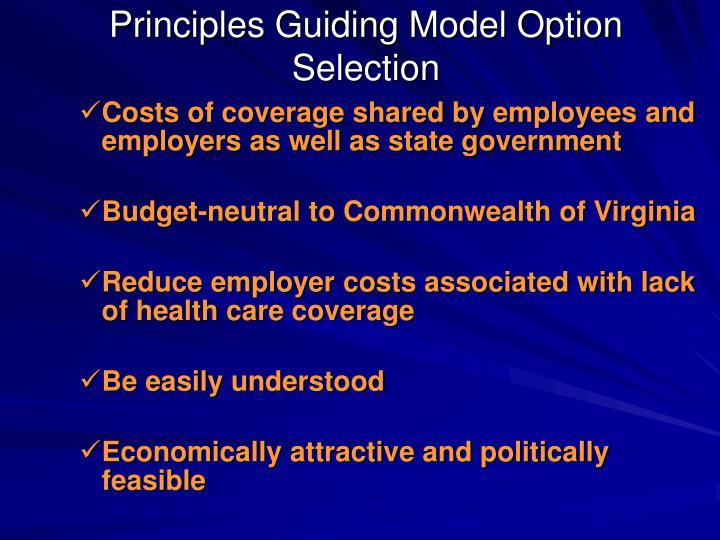 Principles Guiding Model Option Selection