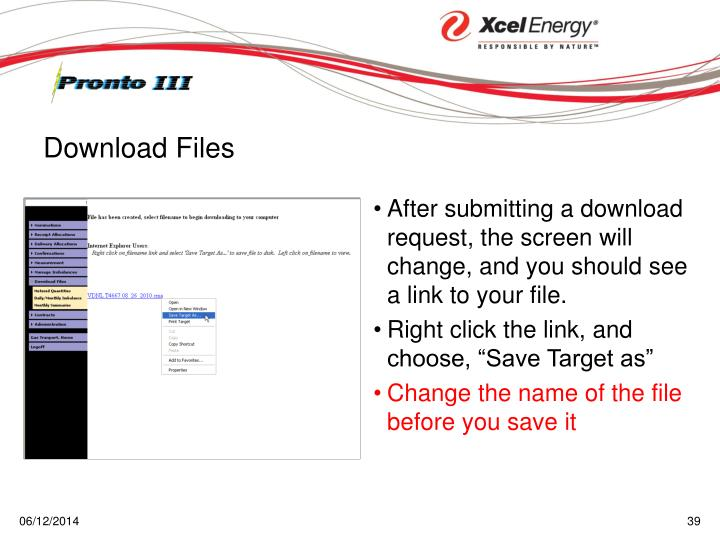 After submitting a download request, the screen will change, and you should see a link to your file.