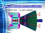 much detector model for mdts study