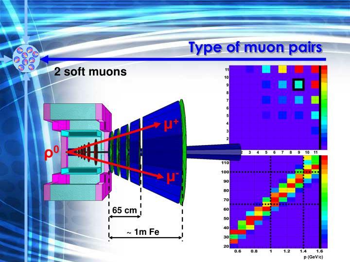 Type of muon pairs