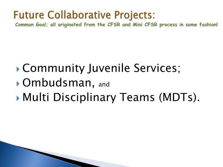Future Collaborative Projects: