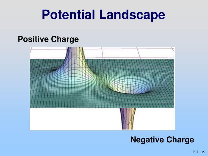 Potential Landscape