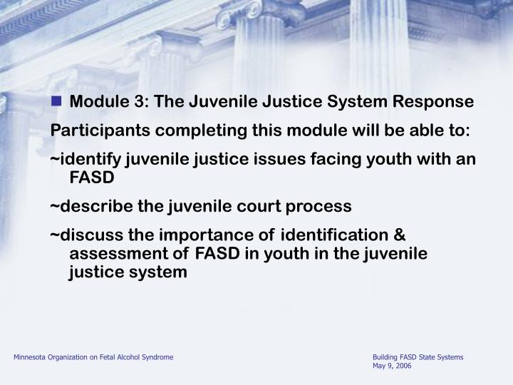 Module 3: The Juvenile Justice System Response