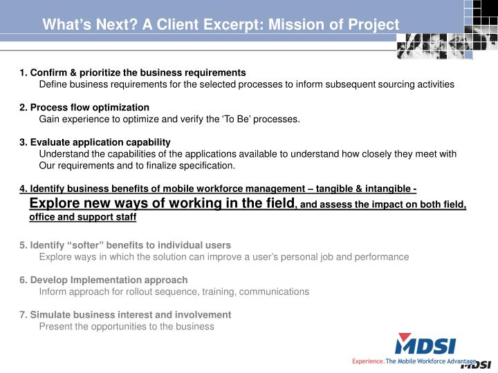 What's Next? A Client Excerpt: Mission of Project