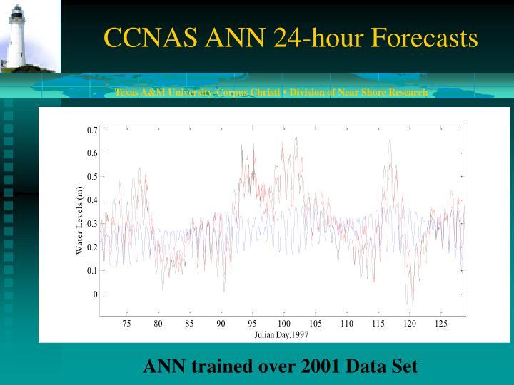 CCNAS ANN 24-hour Forecasts