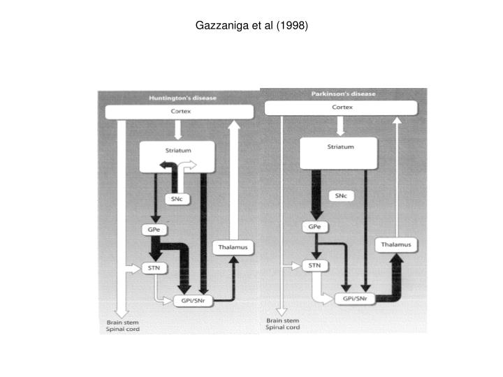 Gazzaniga et al (1998)